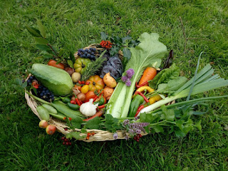basket of mixed organic vegetables placed on  grass