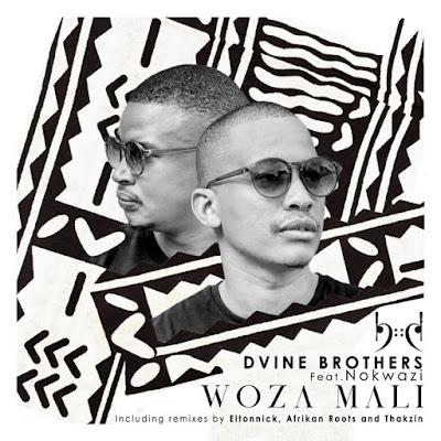 Dvine Brothers Feat. Nokwazi - Woza Mali (Afrikan Roots Chuba Cabra Remix)