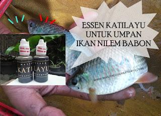 Essen Katilayu Ikan Nilem Khusus Babon