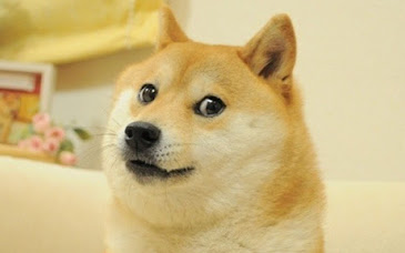GDC 2019: Team Doge - Lis và đồng bọn trở lại