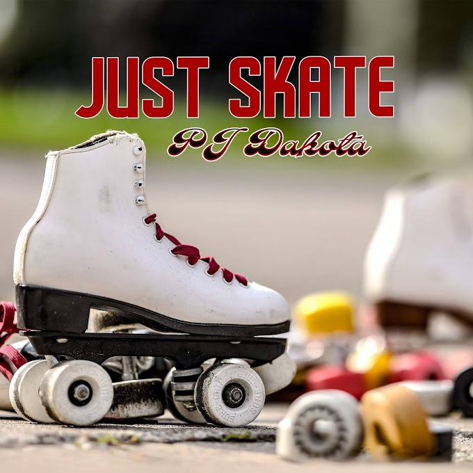 "OUR FAVORITE OF THE DAY: ""JUST SKATE"", BY THE AMAZING PJ DAKOTA"