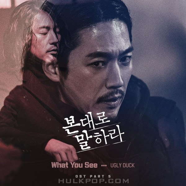 Ugly Duck – Tell Me What You Saw OST Part.5