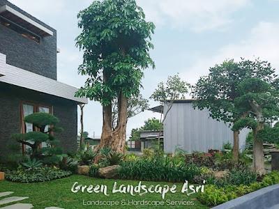 Tukang Taman Banjarnegara | Spesialis Pembuatan Taman Banjarnegara Profesional
