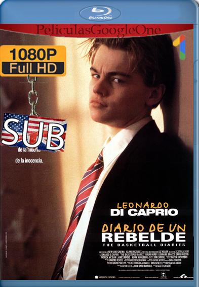 Diario de un rebelde [1995] [1080p BRrip] [Inglés-Subtitulado] – StationTv