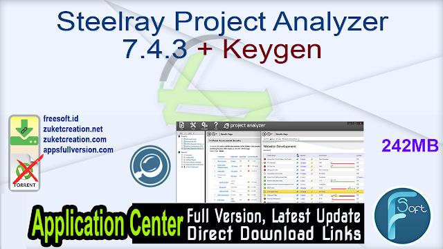 Steelray Project Analyzer 7.4.3 + Keygen