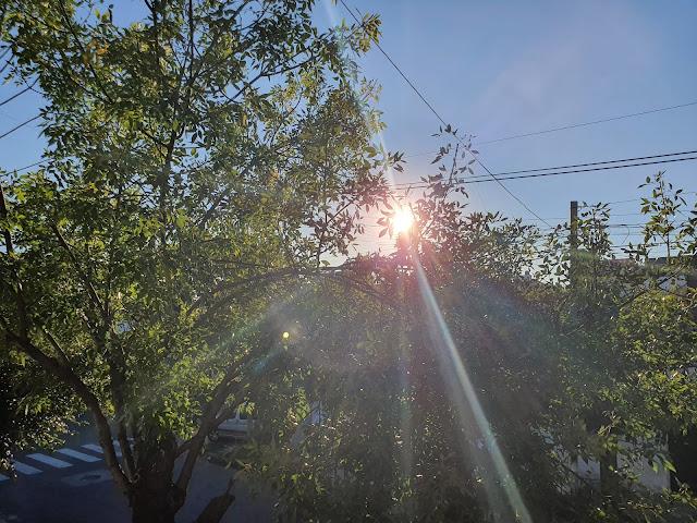 Siempre sale el sol