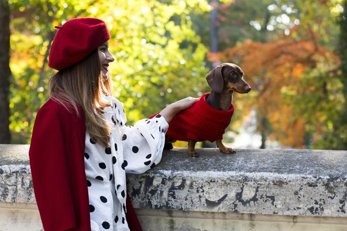 adina nanes fashion dachshund