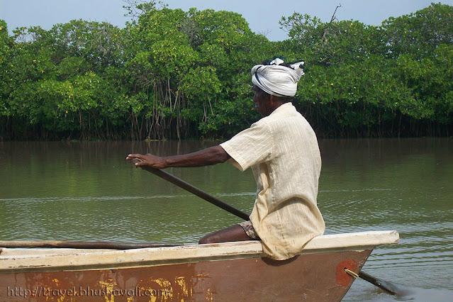 Pichavaram Mangrove Boating