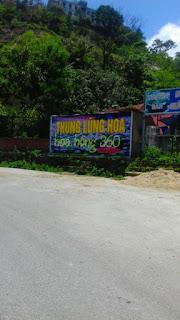 thung lung hoa hong