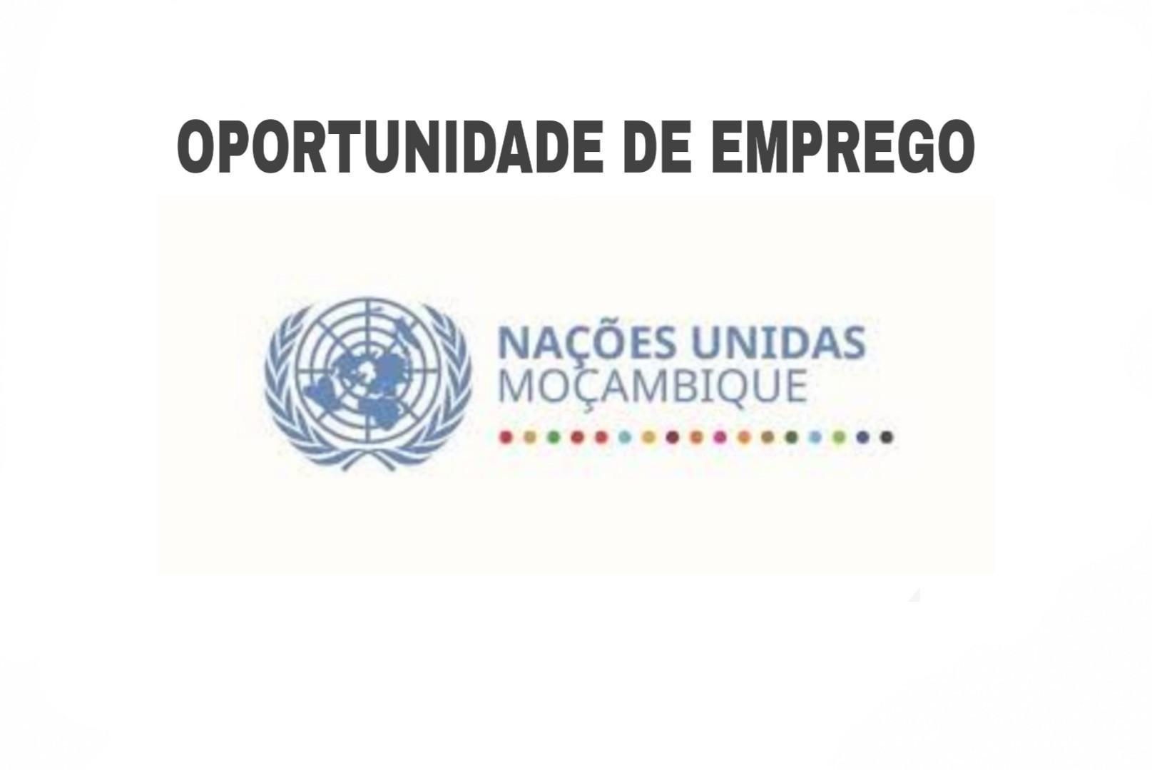 Abertura de concursos para candidaturas ao Programa de Jovens Profissionais das Nações Unidas - 2020
