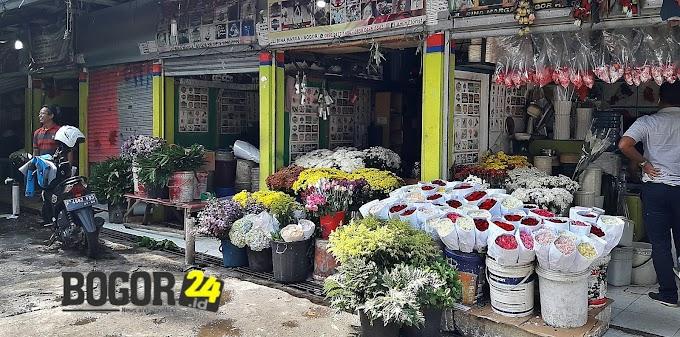Cari Bunga Hias Potong? Disini Tempatnya