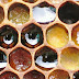أمراض النحل و العلاج