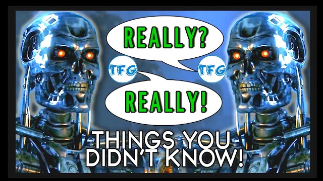 Things You Didn't Know About Terminator (Probably)