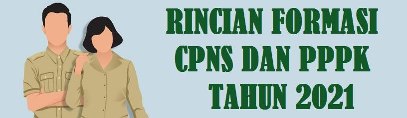 Rincian Formasi CPNS dan PPPK Pemerintah Kabupaten Sumenep  Provinsi Jawa Timur Tahun 2021
