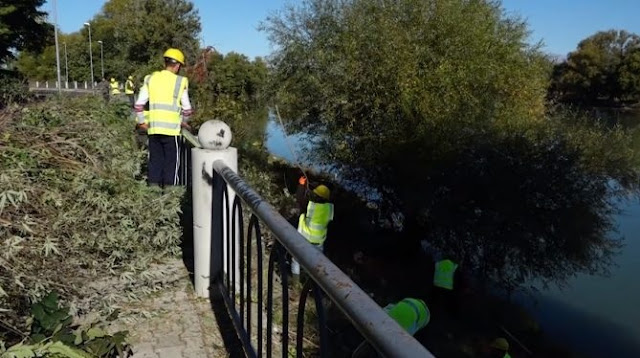 Shkodra Lake shores being cleaned after more than 30 years