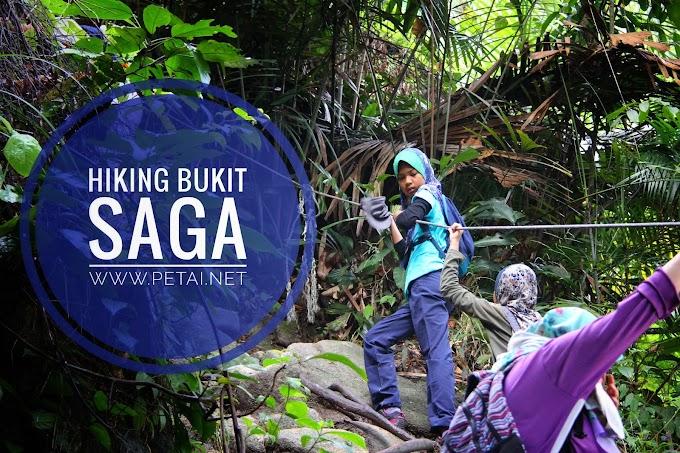 Hiking Ke Bukit Saga, Ampang Bersama Kanak-Kanak Riang