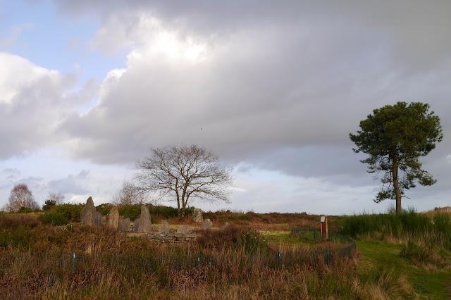 Les Mégalithes de saint-Just 35 ille et Vilaine dans les landes de Cojoux. ici,  la croix saint pierre, monument du néolithique