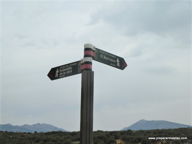 una de las mejores sendas del norte de Madrid