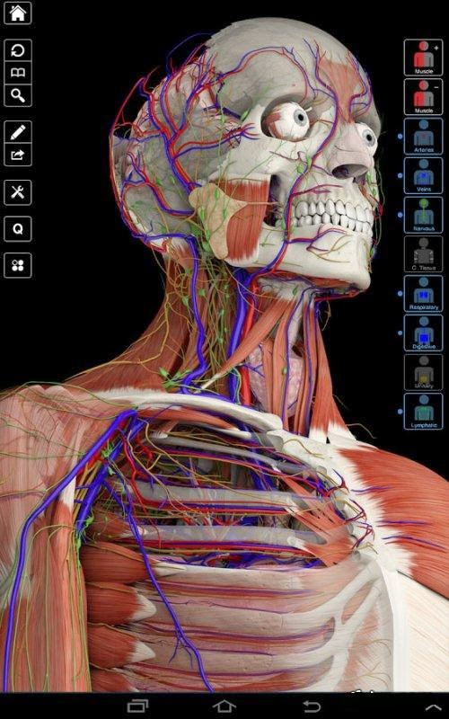 Essential Anatomy 3 v1.1.3 Apk For Android by http://jembersantri.blogspot.com Cover Logo