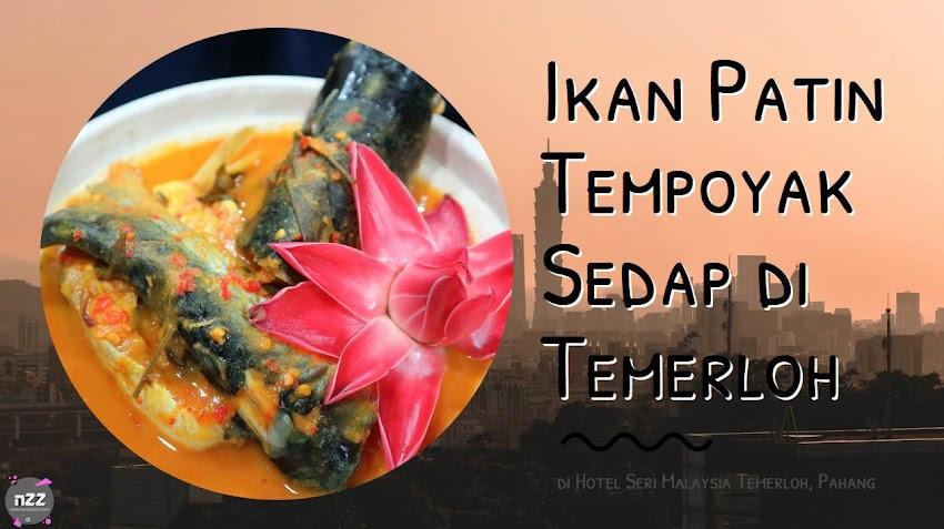 Trip Pahang: Ikan Patin Tempoyak Sedap di Temerloh