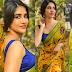Nabha Natesh Latest Saree Photos