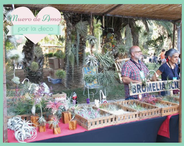 Bromelia Bcn en Palo Market Fest Valencia 2017