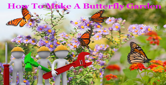How-To-Make-A-Butterfly-Garden