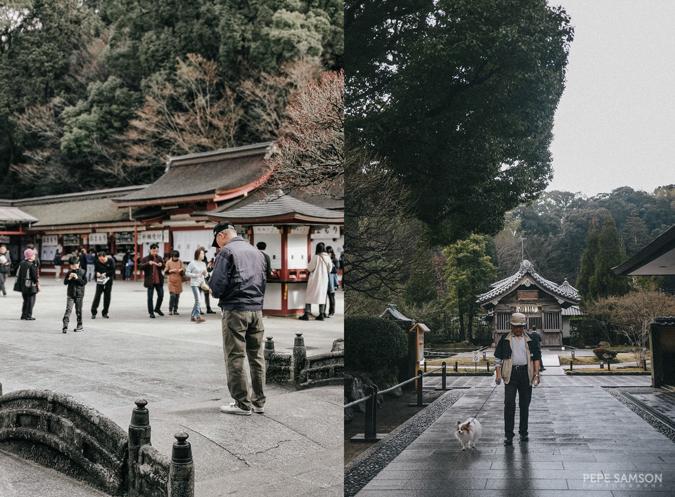 Dazaifu and Oita Day Tour from Fukuokav