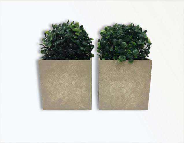 Vasos Cachepôs com Plantinha Permanente