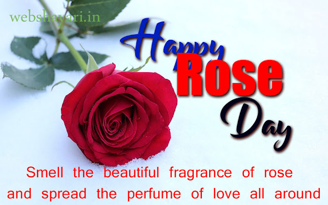 download  world rose day images