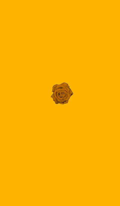 Simple orange roses