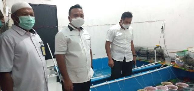 Penyelundupan Baby Lobster di Jambi, Dikendalikan dari Luar Negeri