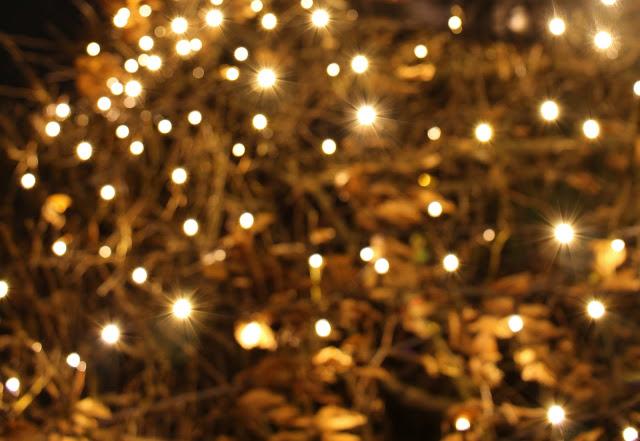 Christmas Garden bunte Lichter