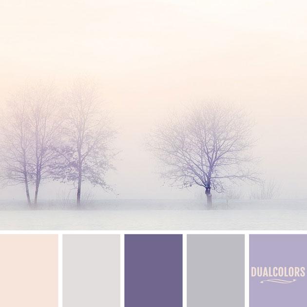 color_paleta_63