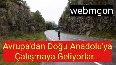 Workaway turkce