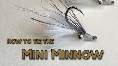 Mini Minnow, Fly Tying, Texas Freshwater Fly Fishing, TFFF, Texas Fly Fishing, Fly Fishing Texas, Texas Fly Tying, Minnow Pattern Fly, Minnow Fly, Bass Fly, Sunfish Fly, Bluegill Fly, Pat Kellner
