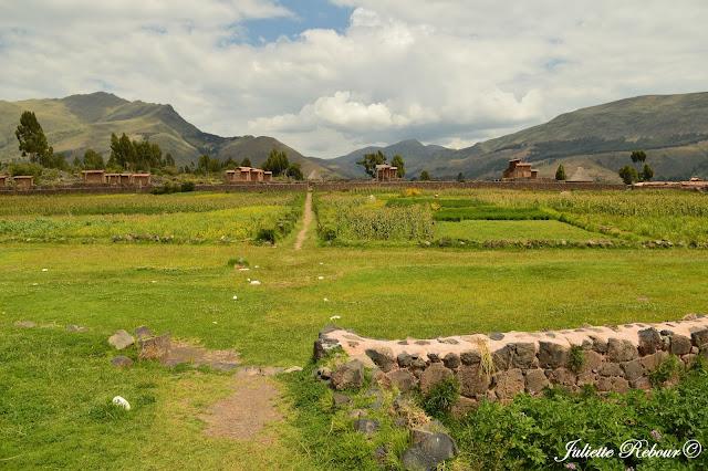 http://lecomptearebour.blogspot.com/2017/06/voyage-au-perou-cusco-altiplano.html