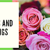 Roses: Colors and Meanings