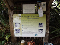 The Welcome sign - Te Kainga Marire, New Plymouth, New Zealand