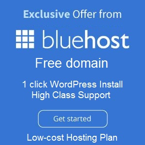 BlueHost - free domain, one click wordpress install and high class support