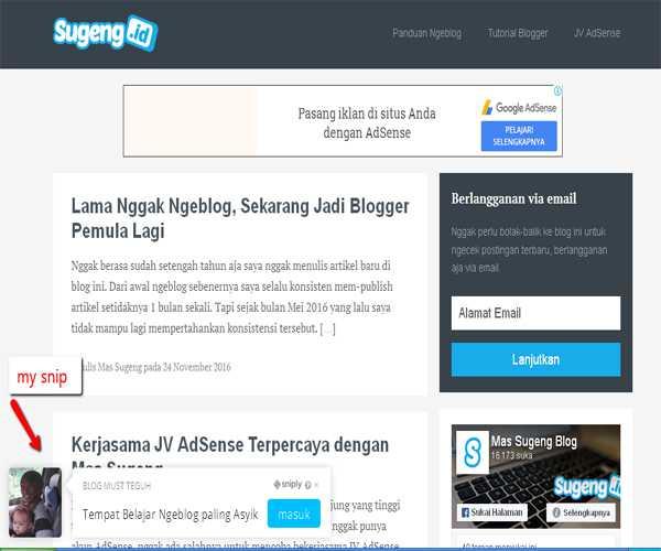 contoh tampilan sniply pada situs target