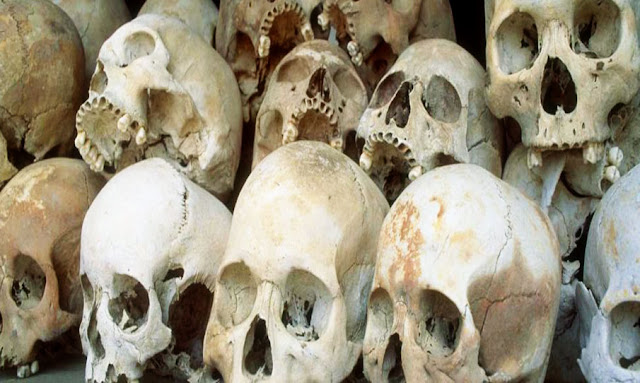 Looted Tunisian skulls and human remains are being sold in black markets on Facebook
