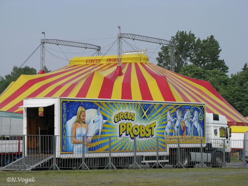 Probst Circus