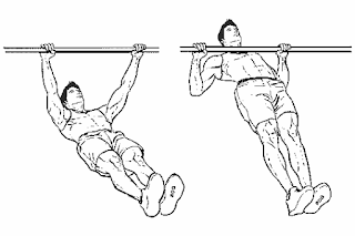4. Inverted Row