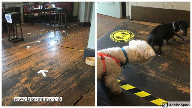 Derby Arms, Witherslack one way system dogs