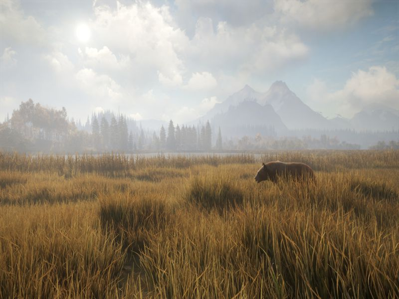 Download theHunter Call of the Wild Game Setup Exe