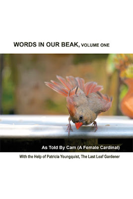 "This picture features the front cover of volume one of my book series, ""Words In Our Beak."" It shows a female cardinal atop a white outdoor table and she is looking down over the ledge. Info re this volume is in a press release that can be read via another post on this blog @ https://www.thelastleafgardener.com/p/press-release-volume-one.html"