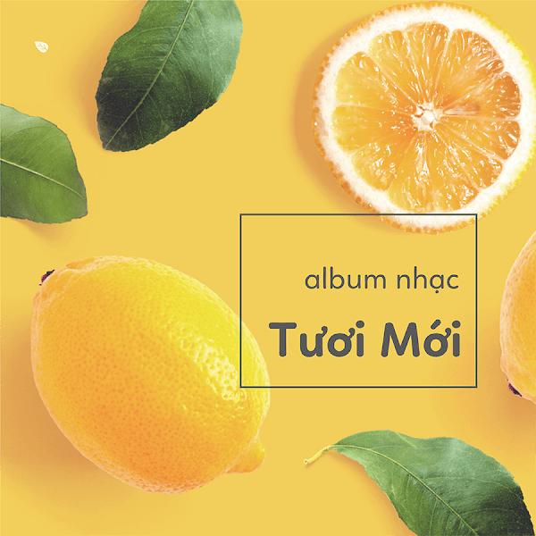 [A79] Vì sao Mẹ Bầu nên nghe nhạc thai giáo mỗi ngày?