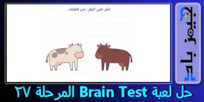حل المرحلة 27 Brain Test