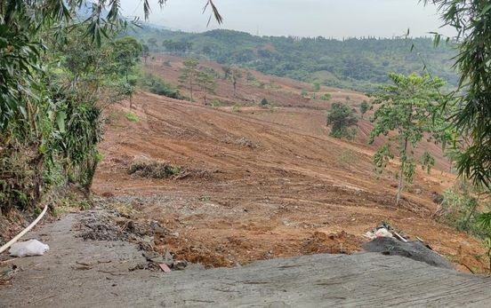 Lahan di Sekitar Rumah Rocky Gerung Sudah Mulai Diratakan Eskavator
